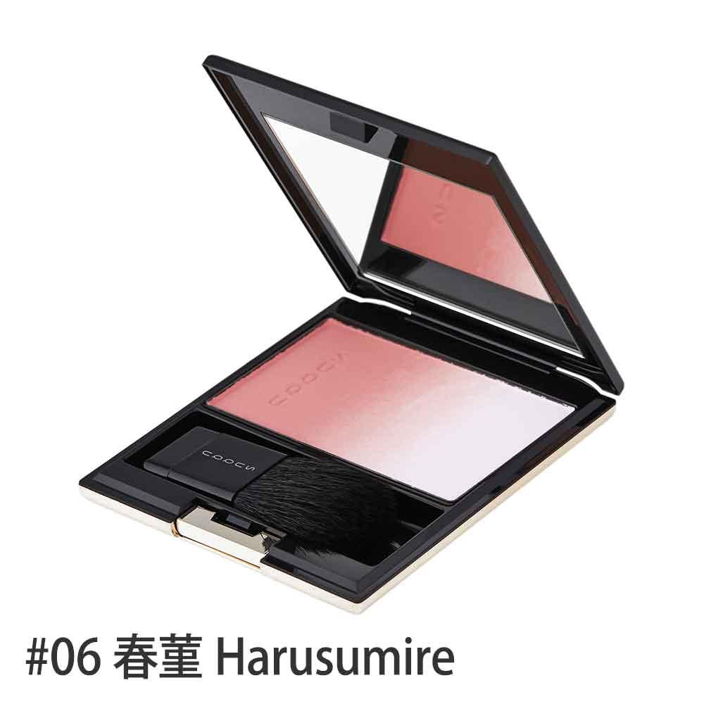 ピュア カラー ブラッシュ【数量限定激安!】 #06(春菫 Harusumire) 7.5g